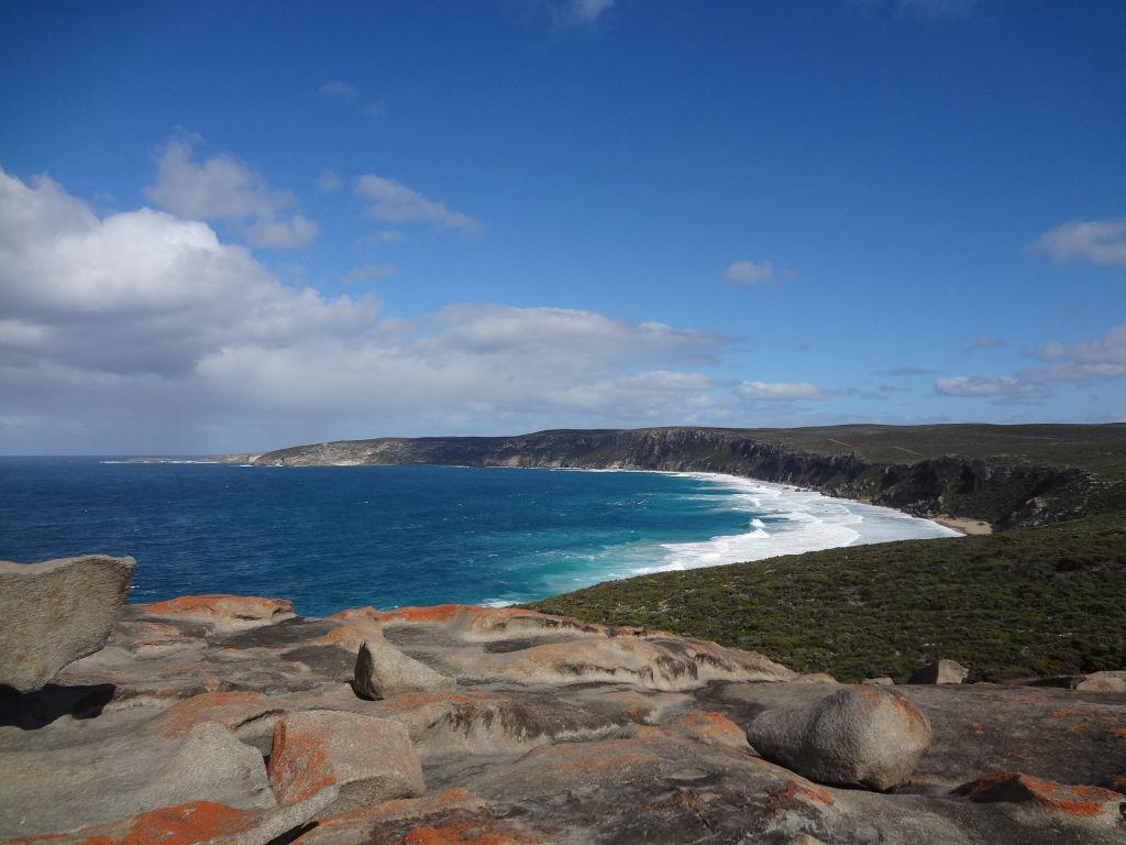 Ilha Kangaroo, Austrália - Esta ilha é ideal para ver animais selvagens em liberdade, como o próprio nome diz, o canguru - Pixabay - Pixabay /Rota de Férias/ND