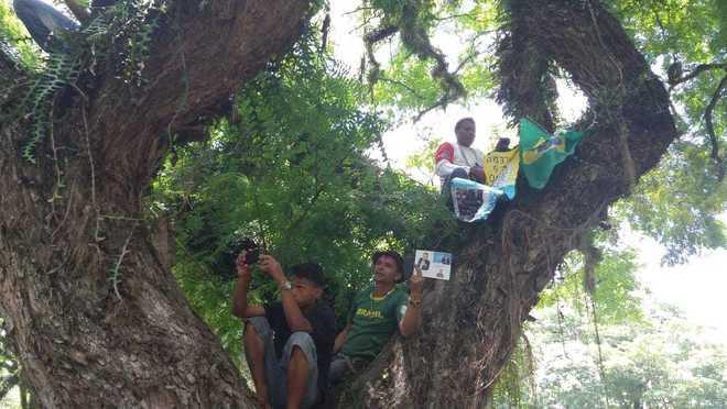 Alguns subiram em árvores para conseguir acompanhar o enterro - Ana Luísa Vieira/R7