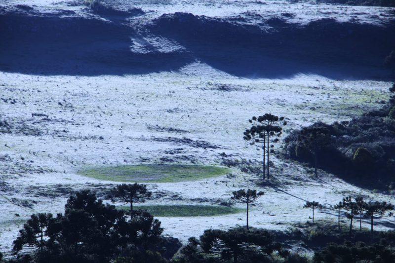 Temperaturas chegaram 0,5 ºC na Serra Catarinense - Mycchel Legnaghi/São Joaquim Online/Divulgação/ND