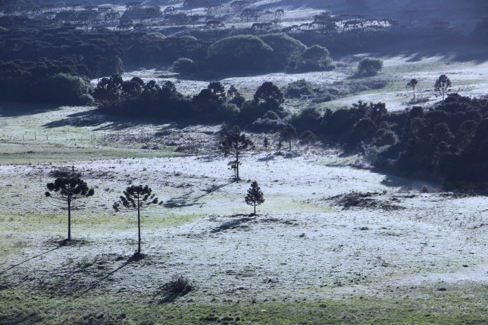 Apesar do frio amanhecer, temperaturas seguem em elevação neste sábado na Serra Catarinense - Mycchel Legnaghi/São Joaquim Online/Divulgação/ND