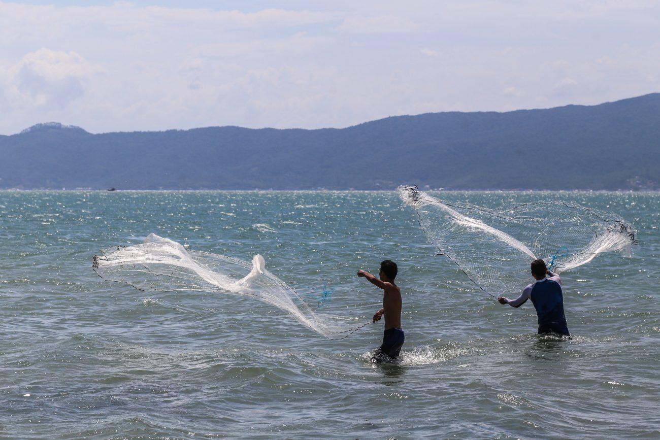 Pescadores lançam redes de pesca na praia da Daniela, no Norte da Ilha - Anderson Coelho/ND