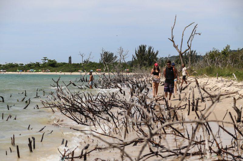 Mar avança na praia da Daniela – Foto: Anderson Coelho/ND