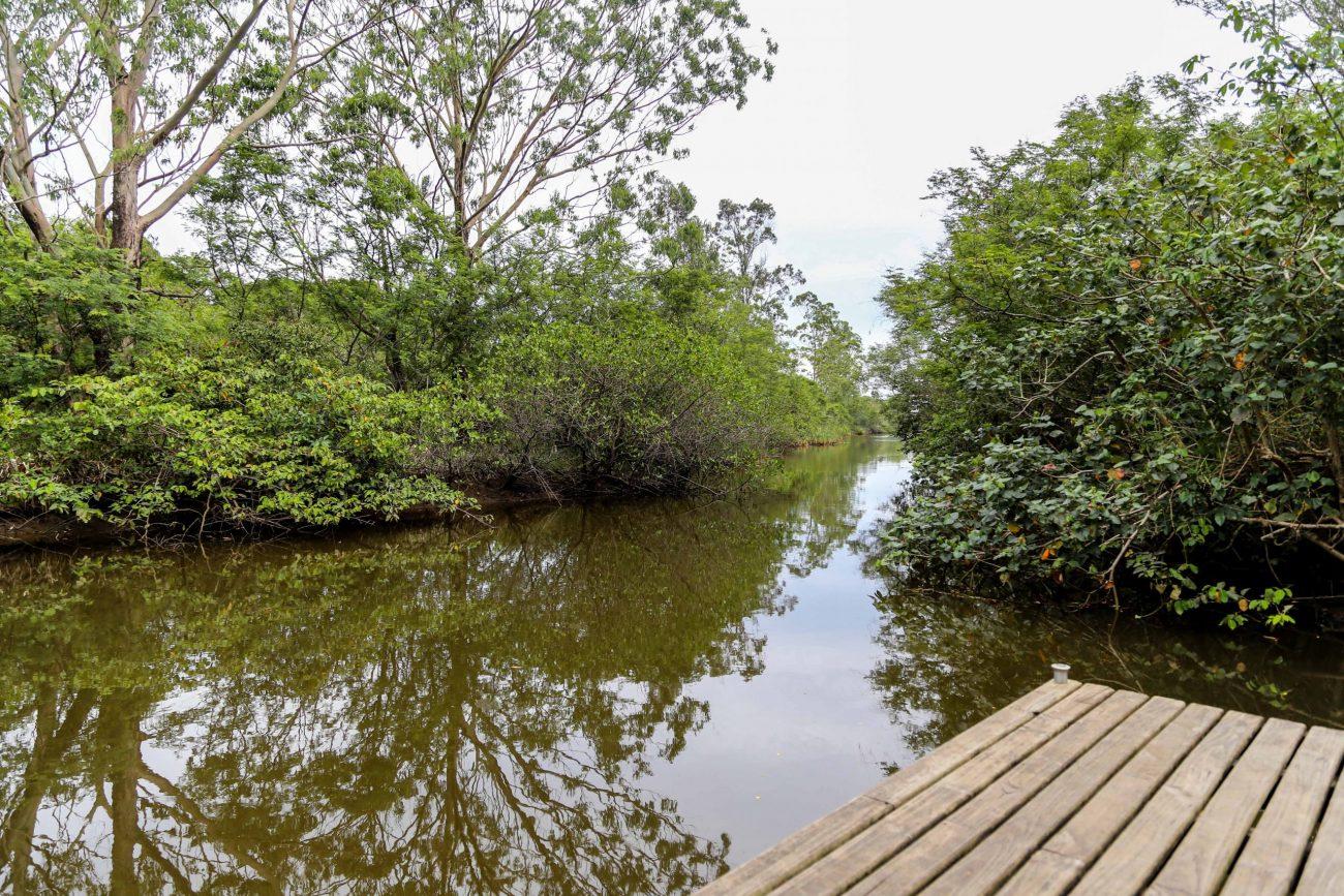 Rio Ratones, no Norte da Ilha de Santa Catarina: Em dias de chuva forte ou maré alta, rio transborda e provoca inundação em residências - Anderson Coelho/ND