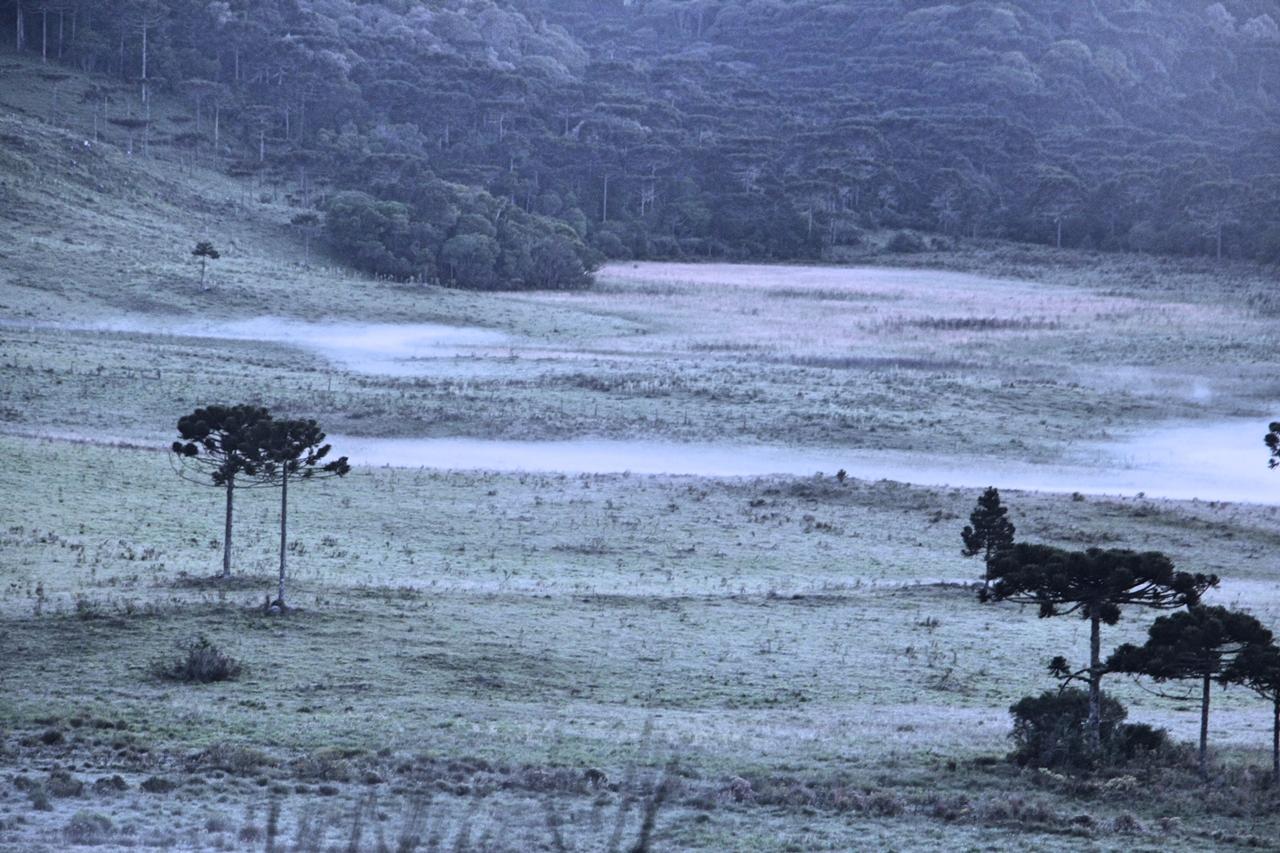 O município amanheceu com 4,4°C na manhã desta primeira segunda-feira de dezembro - Mycchel Hudsonn Legnaghi/São Joaquim Online/Divulgação/ND