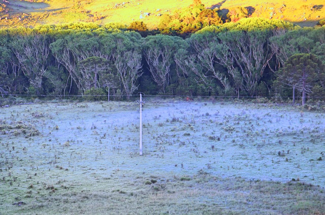 Nos municípios vizinhos as temperaturas foram ainda mais baixas: Urupema registrou 4,2°C, enquanto Bom Jardim da Serra foi a recordista do frio: 2,9°C - Mycchel Hudsonn Legnaghi/São Joaquim Online/Divulgação/ND
