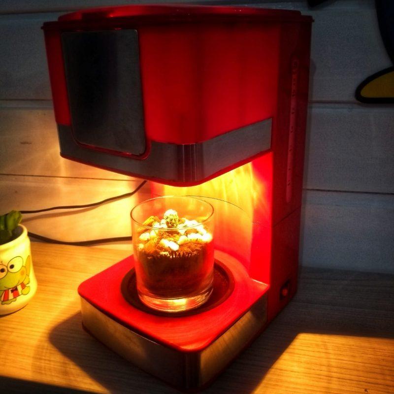 Pelas mãos habilidosas de Paula e Jacson, do Saúva Lab, uma cafeteira estragada virou uma luminária – Foto: Divulgação/ND