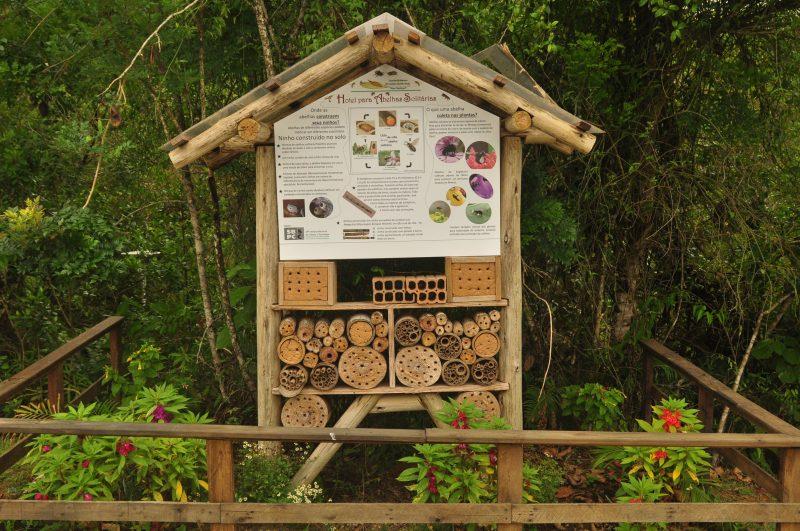 Hotel para Abelhas Solitárias do Jardim Botânico de São José – Foto: Gabriel Lain/ND