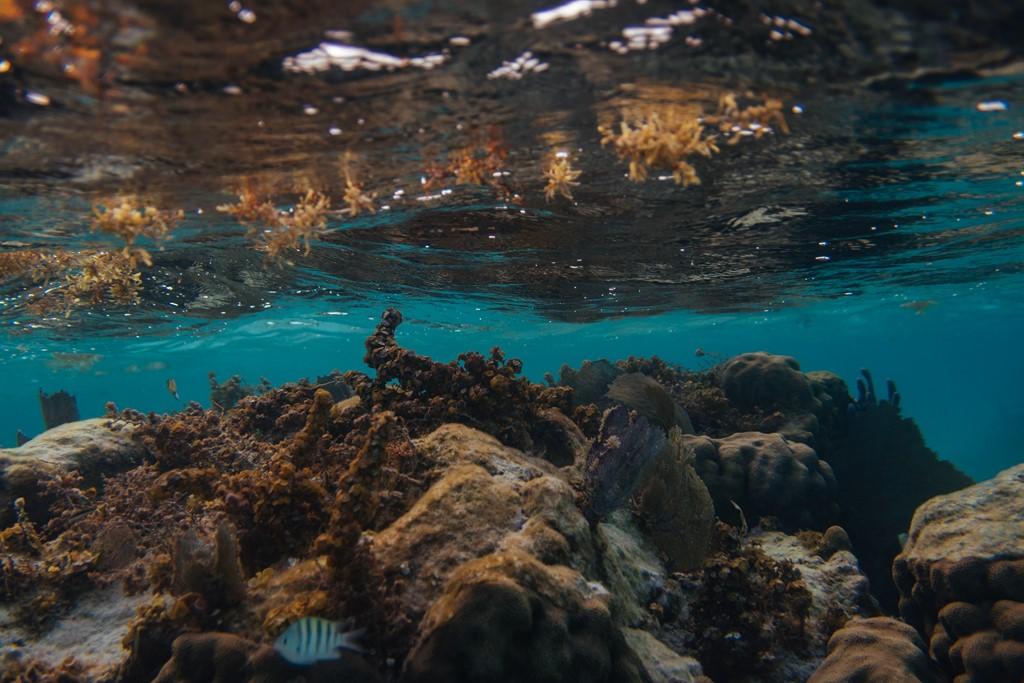 Também no Caribe, Belize conta com uma visual paradisíaco, além de ser um local procurado por mergulhadores - Pixabay - Pixabay/Rota de Férias/ND