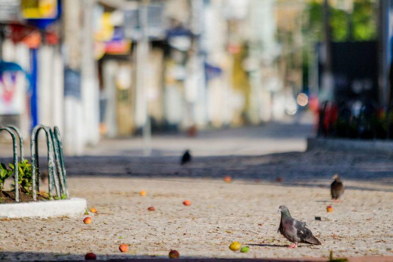 Centro de Florianópolis, em uma sexta-feira útil. - Foto Flavio Tin/ND