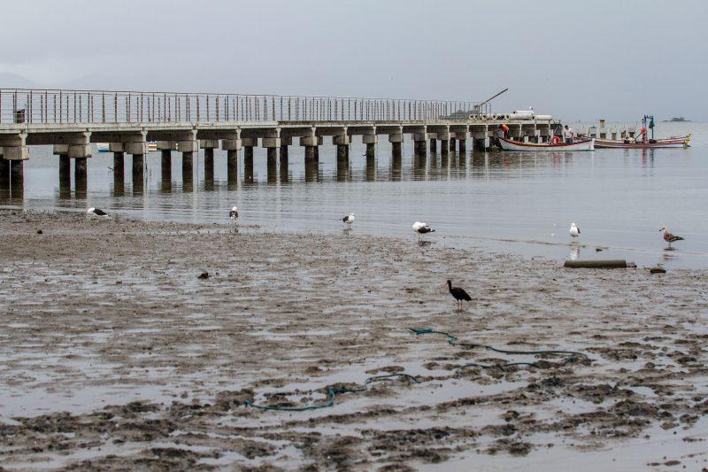 Lodo tomou conta da praia do João Paulo. Foto/Arquivo: Flávio Tin/ND