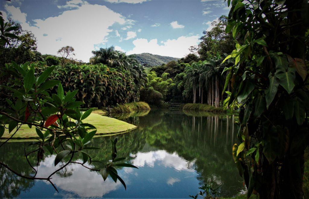 Instituto Inhotim, Brumadinho - https://artsandculture.google.com/partner/inhotim?hl=pt-br - Pixabay - Pixabay /Rota de Férias/ND