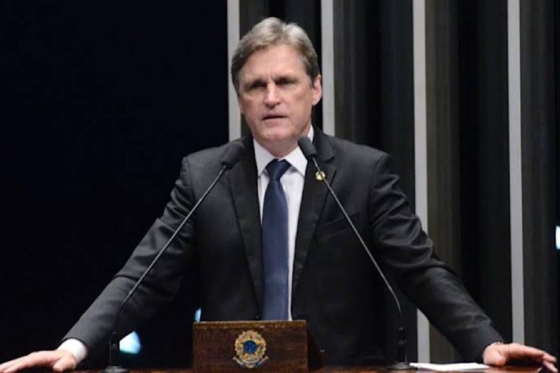 O senador Dário Berger (MDB) em sessão no plenário – Foto: Divulgacão/Paulo Alceu/ND