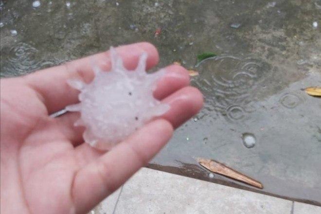De acordo com o jornal El Heraldo de México, o fenômeno meteorológico foi registrado na noite do último sábado (16) - Reprodução/Twitter/Yadith Valdez