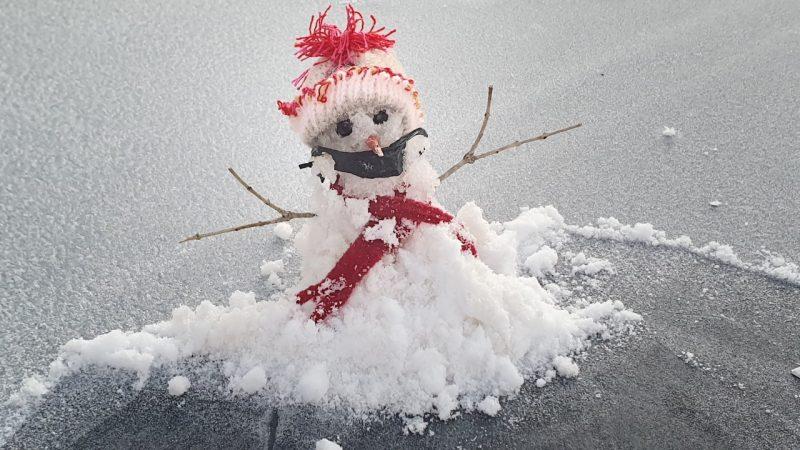 """Inclusive, tanto gelo até permitiu a aparição do """"Geanildo"""", simpático bonequinho de geada que é um símbolo das manhãs de frio em São Joaquim - Mycchel Legnaghi/São Joaquim Online"""