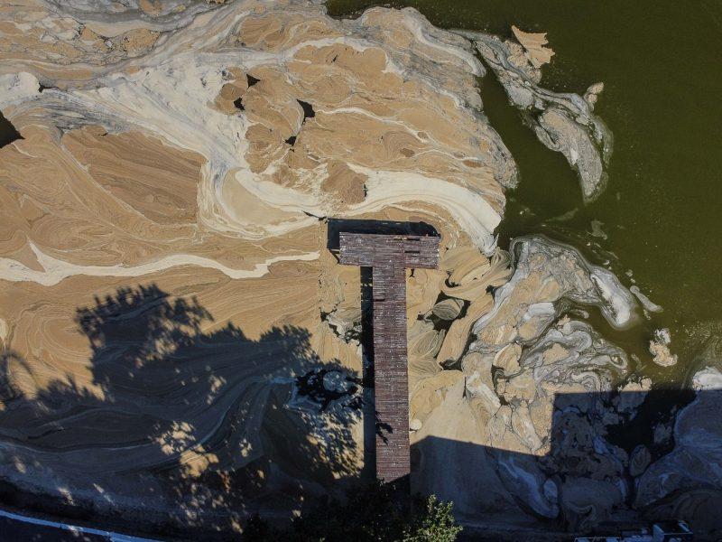 Grande extensão da espuma na Lagoa da Conceição – Foto: Anderson Coelho/ND