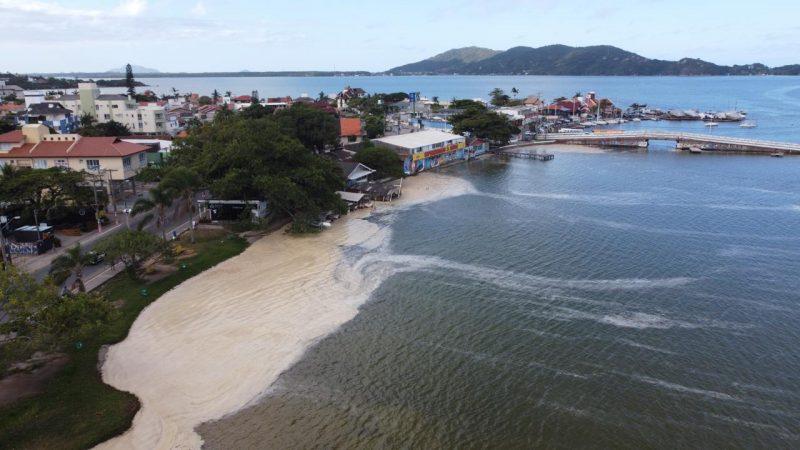 A equipe do ND flagrou a espuma na Lagoa da Conceição – Foto: Anderson Coelho/ND