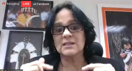 Ministra Damares Alves participou de coletiva de imprensa on-line – Foto: Reprodução/ND