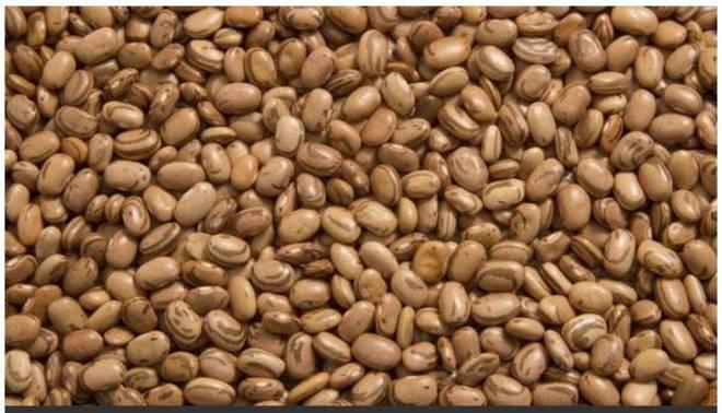 Mais arroz e menos feijão no prato. O feijão-carioca subiu 17,29% em abril. Como alternativa estão a lentilha, ervilha e grão de bico. Mas outra dica é variar o tipo do feijão que esteja com o melhor preço, como preto, vermelho, branco, fradinho, de corda etc - Reprodução
