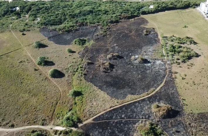 Incêndio atingiu área de 2,3 hectares – Foto: Reprodução/CBMSC/ND