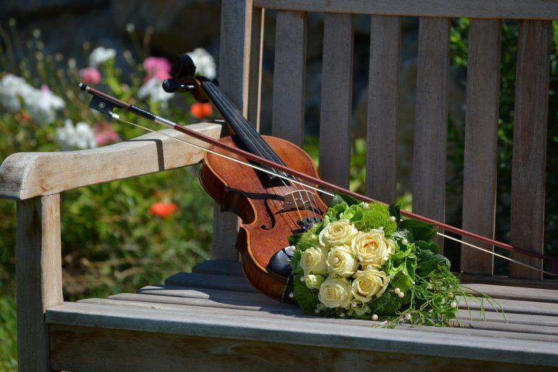 Em Florianópolis, Fontão Violinista oferece serviço de serenata – Foto: Divulgação/Pixabay
