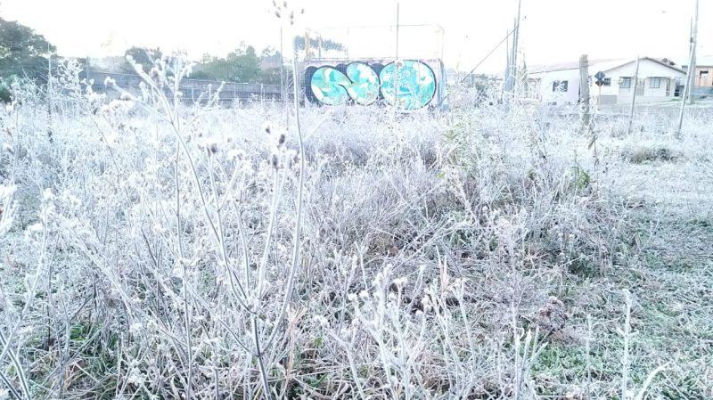 Serra amanheceu com geada nesta quarta-feira (3) – Foto: Wagner Urbano/Divulgação/ND