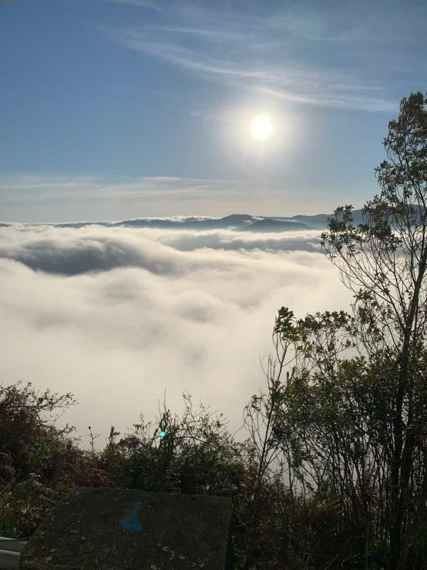 This landscape is most visible in the morning and at night, where temperatures tend to be lower. The fog, according to Marcelo, is a cold front arrival notice that should occur from Saturday to Sunday.