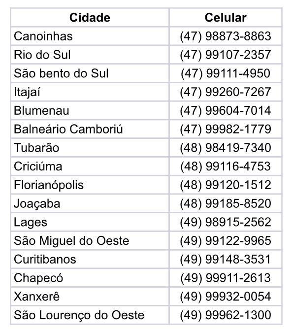 Telefones que devem ser utilizados apenas nesta situação de emergência – Foto: CBMSC/Divulgação/ND