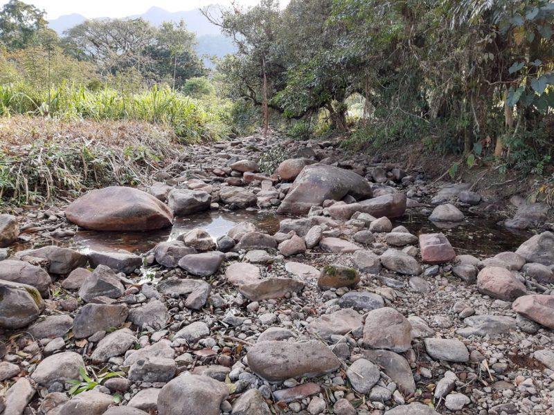 Rio Piraí opera com níveis muito abaixo do esperado para esta época do ano – Foto: Juliano Masselai/NDTV