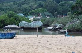 Rio Canudos descarrega matéria orgânica no mar em Estaleiro – Foto: Divulgação/Prefeitura de Balneário Camboriú
