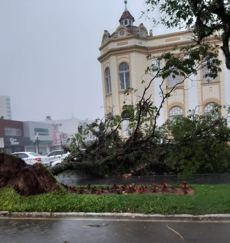In Itajaí, several damages were recorded throughout the city. In addition, workers were trapped in construction scaffolding during the storm - Social Networks