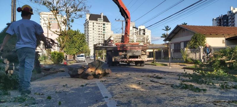 Teams worked throughout Wednesday (1st) to clear the roads in Joinville. Until Wednesday night, about 14 thousand consumer units remained without electricity in the largest city in the state - Kelly Borges / NDTV