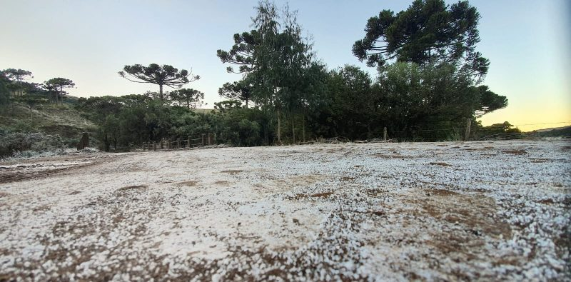 Dirt road in São Joaquim was completely frozen with the intense cold.  - Mycchel Legnaghi / Press Release / ND