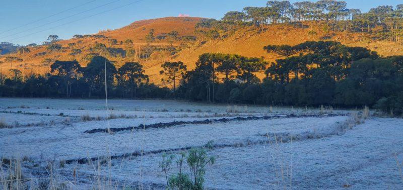 Planalto Sul: Mesmo com o sol aparecendo durante o dia, a região do Planalto Sul tem chance de uma geada isolada e nevoeiro na parte da manhã. Além disso, a mínimas será de -2°C e máximas de 23°C – Foto: Mycchel Legnaghi/Divulgação/ND