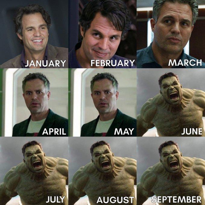 Eita! Se acalma, Mark Ruffalo! Não precisa baixar o Hulk não… Segura a onda, meu filho! – Foto: Reprodução Twitter/ND