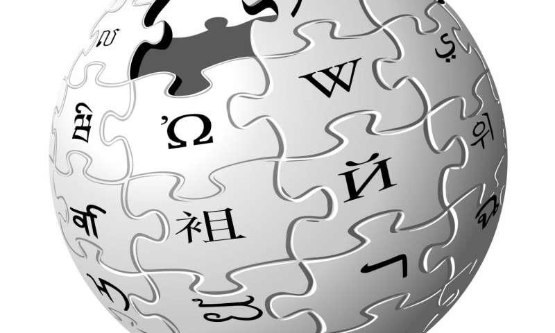 O Wikipédia lançava a sua versão em português, em maio de 2001 – Foto: Divulgação/ND