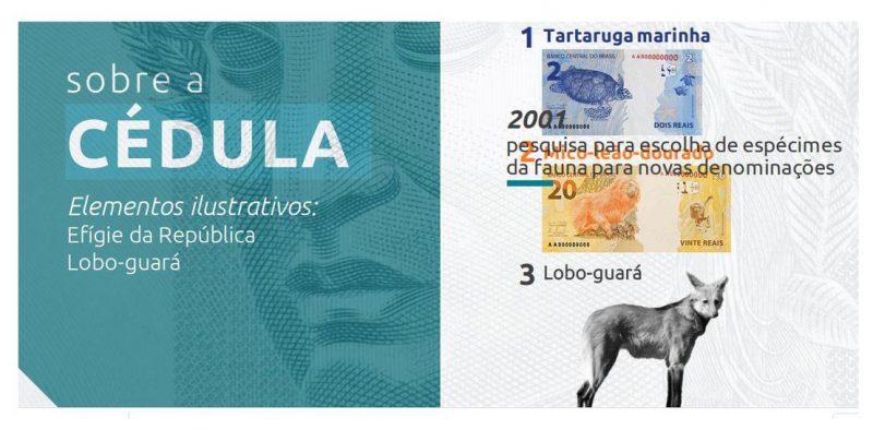 Nova cédula de R$ 200 entra em circulação na quarta-feira – Foto: Banco Central do Brasil/Divulgação/ND