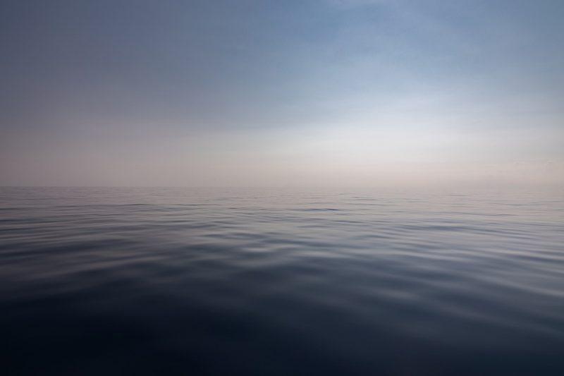 O relatório, produzido em parceria com a Sociedade de Zoologia de Londres, apontou ainda que cerca de 75% do solo e 40% dos oceanos foram degradados pela ação humana – Foto: Reprodução/Pixabay