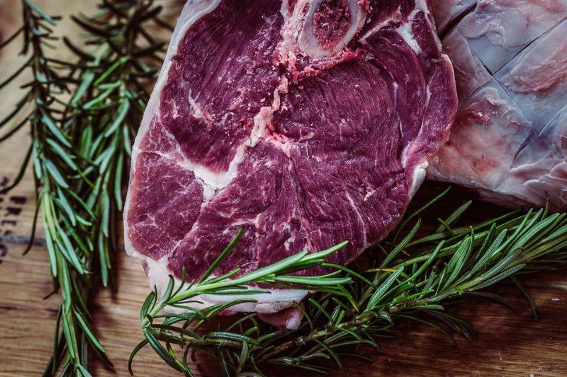 Os principais vilões apontados pelo estudo foram a expansão da produção de carne bovina, e monoculturas, como soja e óleo de palma – Foto: Reprodução/Poxabay