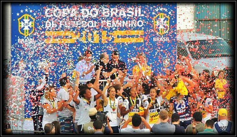 Comemoração da equipe catarinense, após a conquista do título de 2015 da Copa do Brasil – Foto: Facebook/Avaí/Kindermann/ND