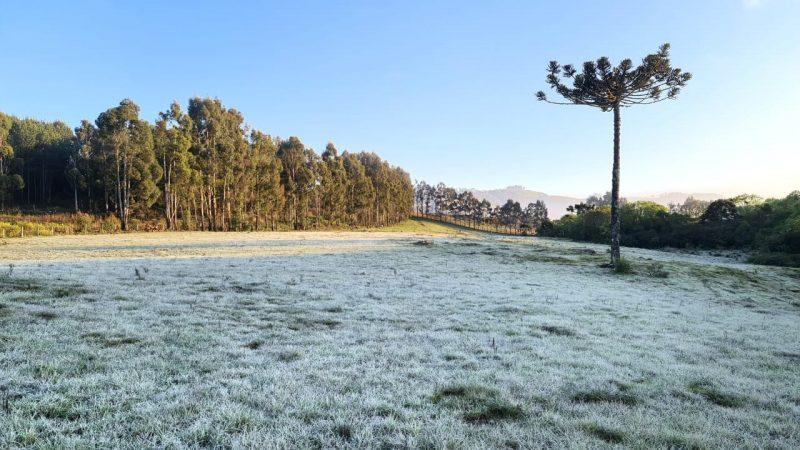 Outono deve registrar temperatura abaixo da média com formação de geada em SC – Foto: Mycchel Legnaghi / São Joaquim Online