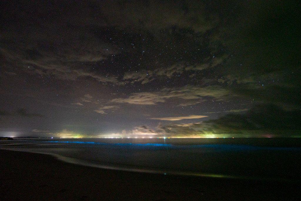 Fitoplânctons bioluminescentes na água - Sebastian Remme Photographer on Visualhunt.com / CC BY - Sebastian Remme Photographer on Visualhunt.com / CC BY/Rota de Férias/ND
