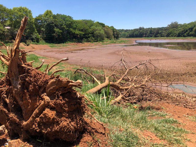 A seca que atingiu a região não era vista há mais de 15 anos. Em alguns momentos, o nível do Lajeado São José chegou a 10%.
