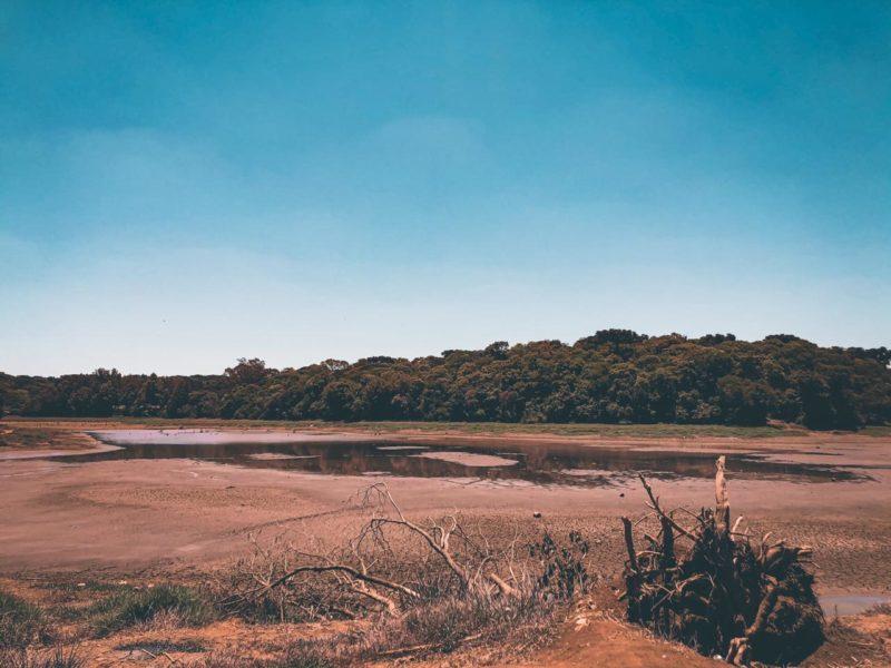 A região Oeste de Santa Catarina enfrenta uma seca histórica que não era vista há mais de 15 anos. O lajeado São José, que abastece Chapecó, chegou a ficar seco. Foto: Willian Ricardo/ND
