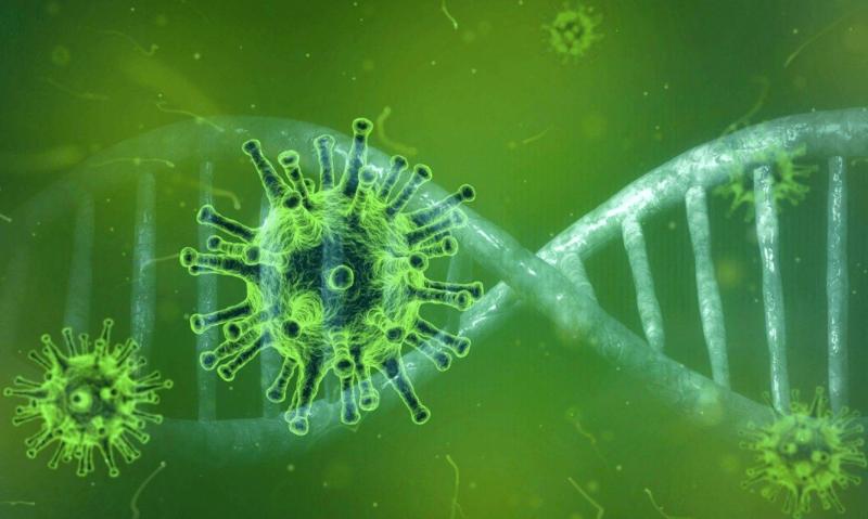 Estudo pode sugerir terapias alternativas eficientes no combate à Covid-19 – Foto: Pixabay