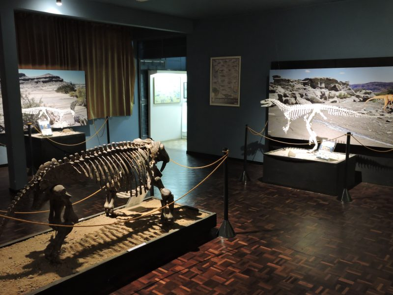 Museu da Terra e da Vida – Foto: Luiz Carlos Weinschutz