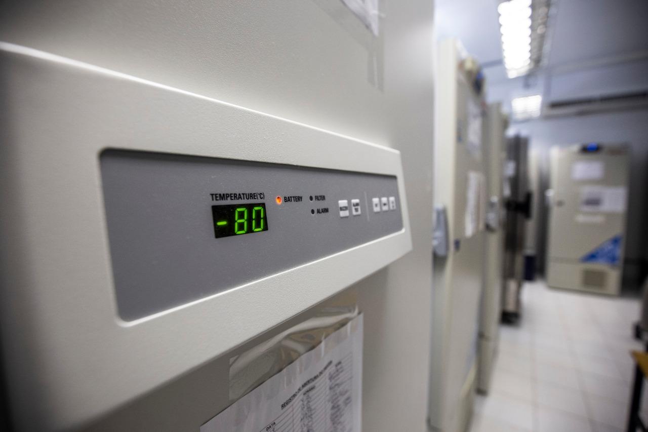A capacidade de armazenamento varia conforme o modelo, mas a média fica em torno de 400 a 500 litros por freezer. - Anderson Coelho/ND