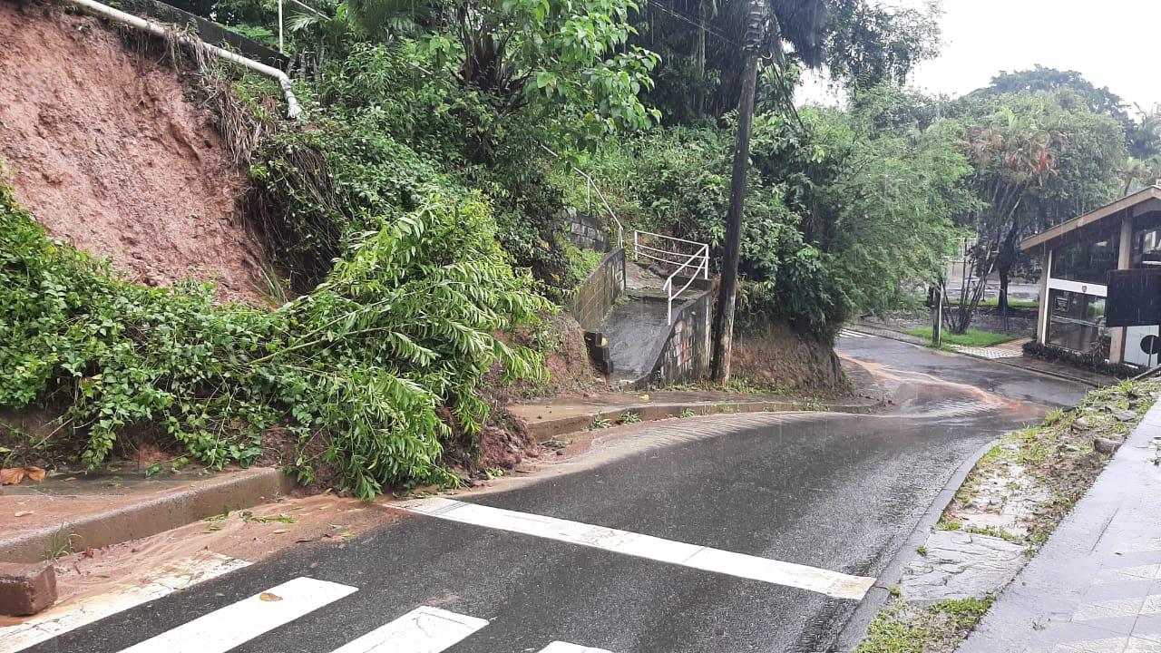 Árvore caída no acesso ao túnel depois da ponte Aldo Pereira de Andrade (Ponte de Ferro), em Blumenau - Bruno César/ND Mais