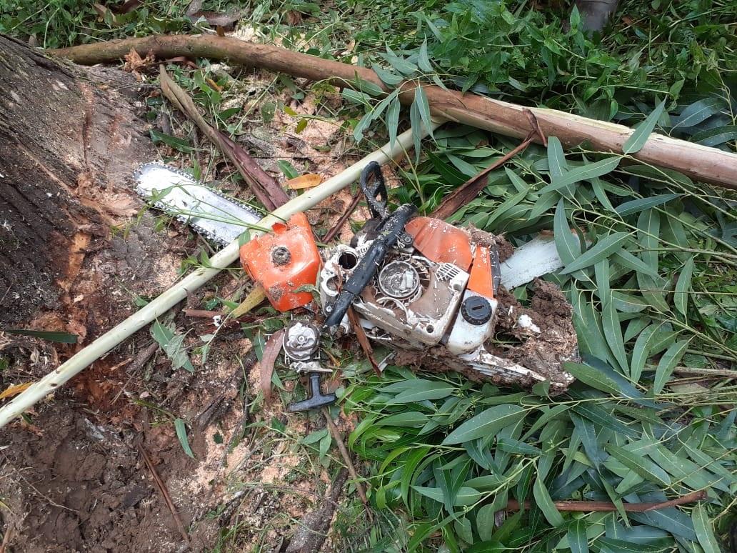 Trabalhador morre atingido por árvore que ele cortava - CBVPG/Divulgação