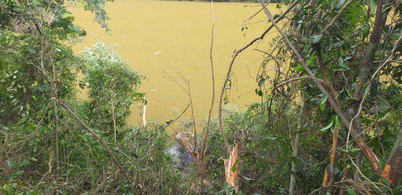 Rodado do caminhão que caiu no rio pode ser visto da margem do rio – Foto: Jair Correia/NDTV