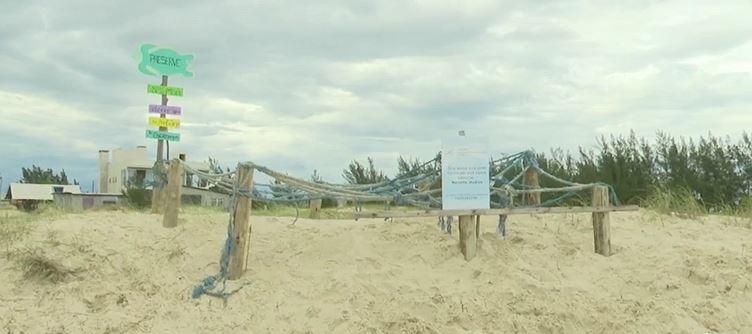 Cercado de madeira construído por pescador para proteger desova de tartaruga